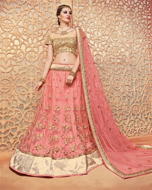 Patang Korean Net Pink Coloured Resham and Hand Wo