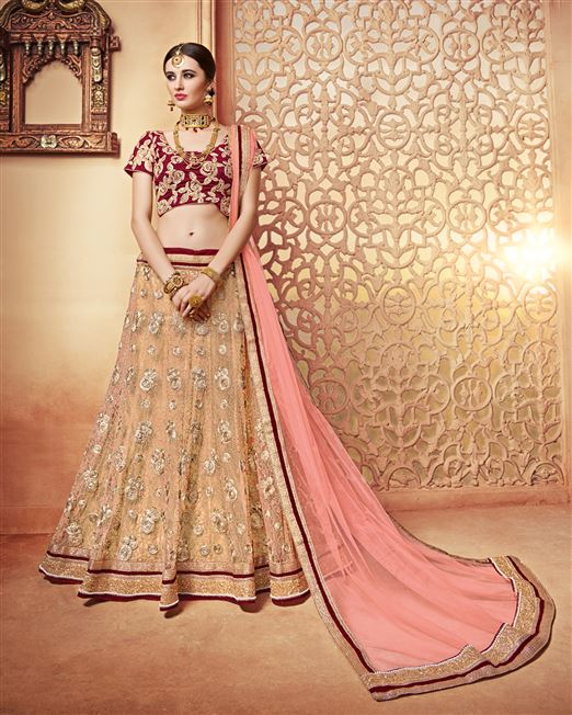 Patang Butterfly Net Beige Coloured Diamond Work B